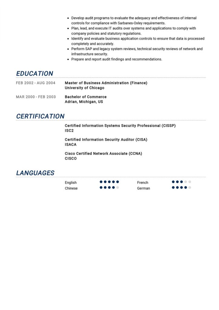 Auditor-Resume-Example-2