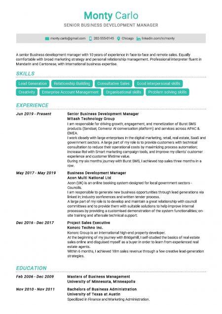 Senior Business Development Manager Resume Sample