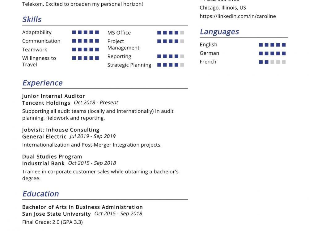 Group Internal Auditor Resume