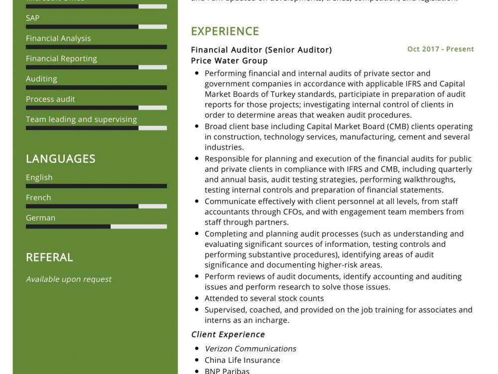 Senior Auditor Resume Sample