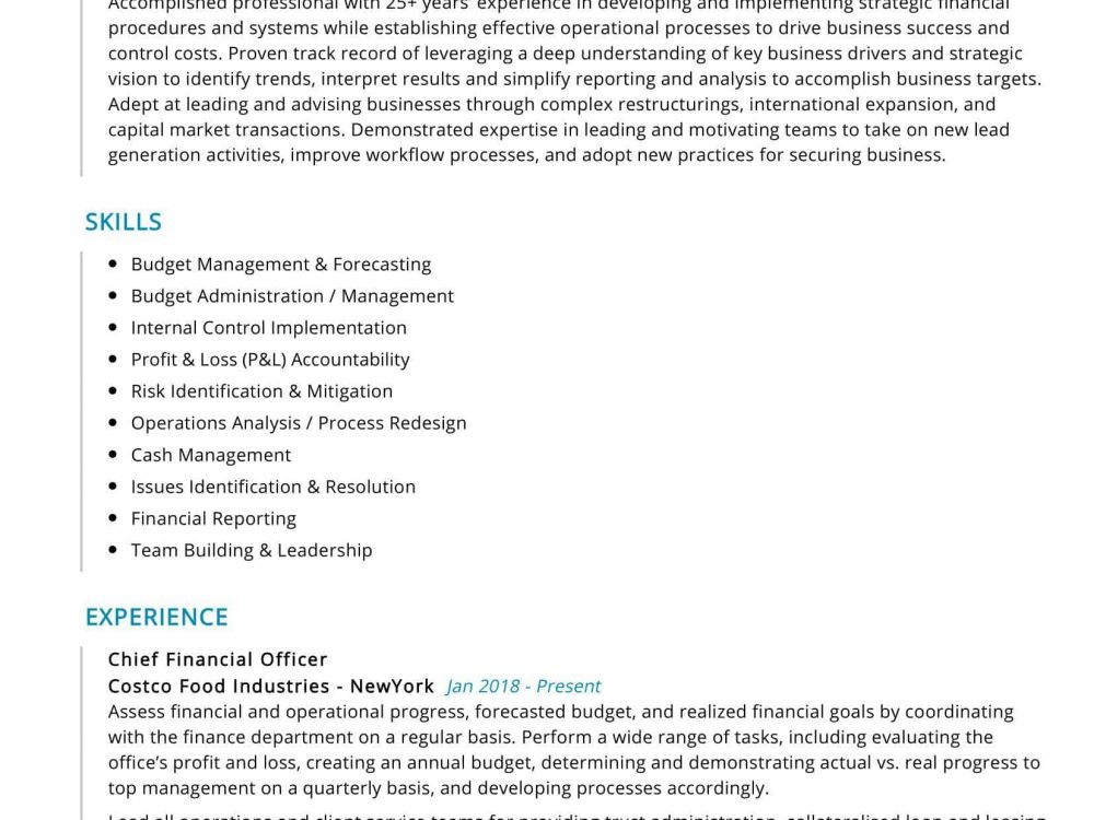 Chief Financial Officer Resume Sample