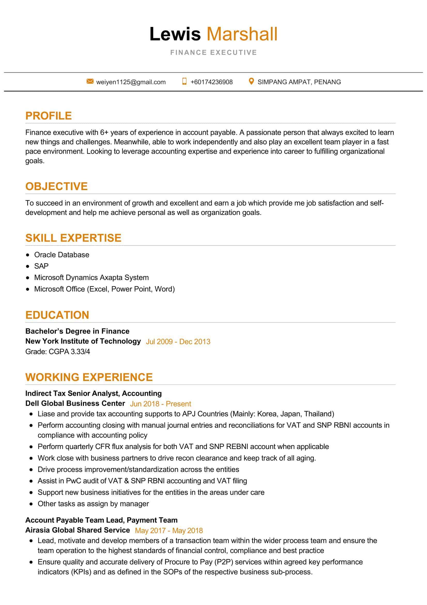Finance Executive Resume Sample