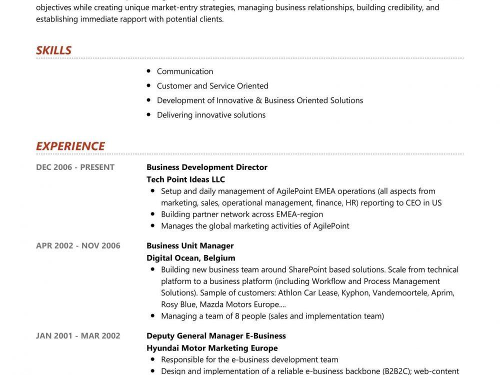 Business Development Director Resume Sample