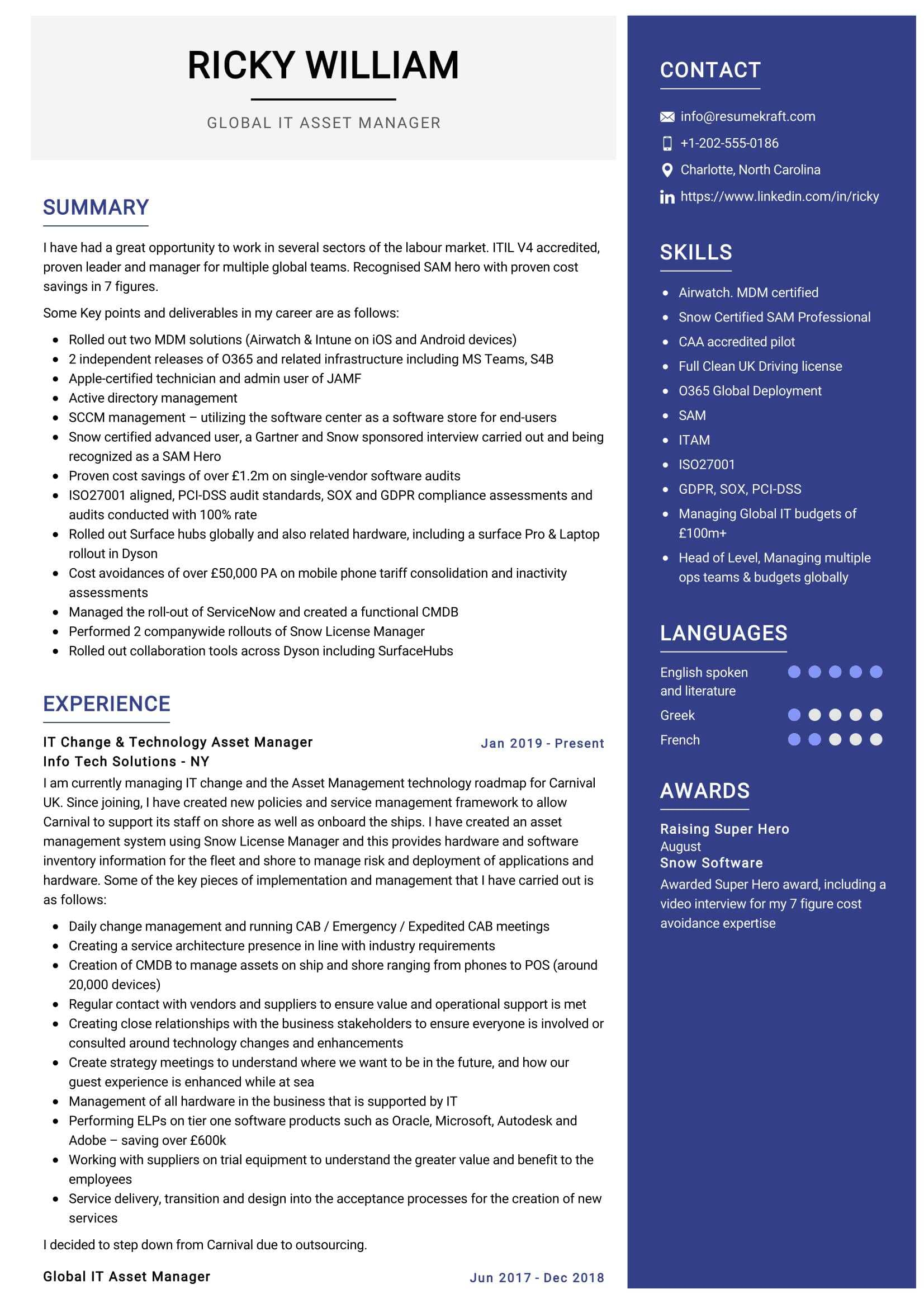 IT Asset Manager Resume Sample