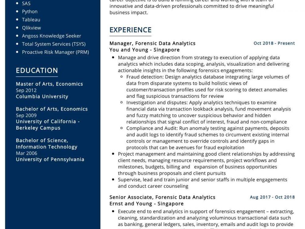Data Analytics Manager Resume