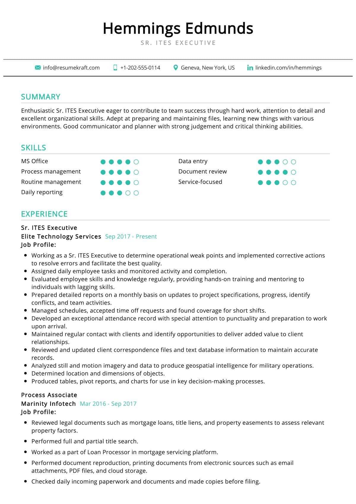 Senior ITES Executive Resume