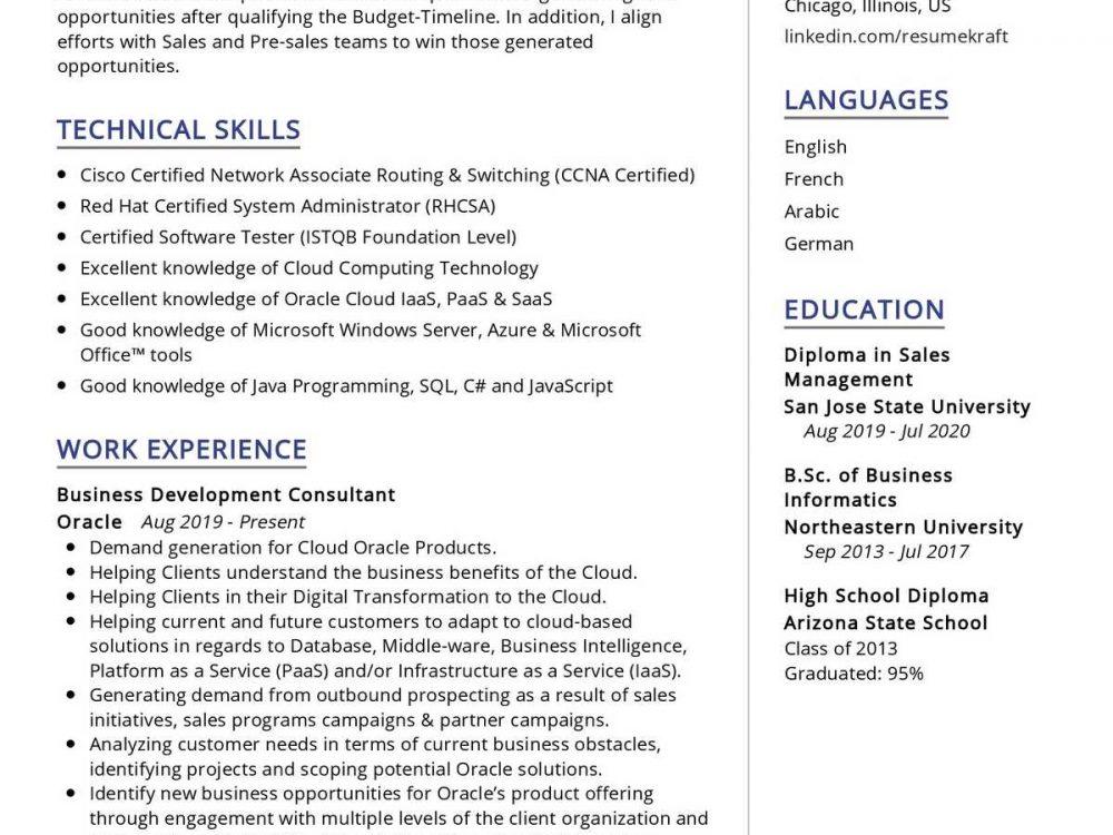 Business Development Consultant CV