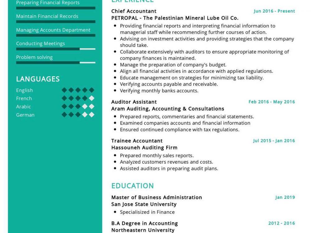 Chief Accountant Resume