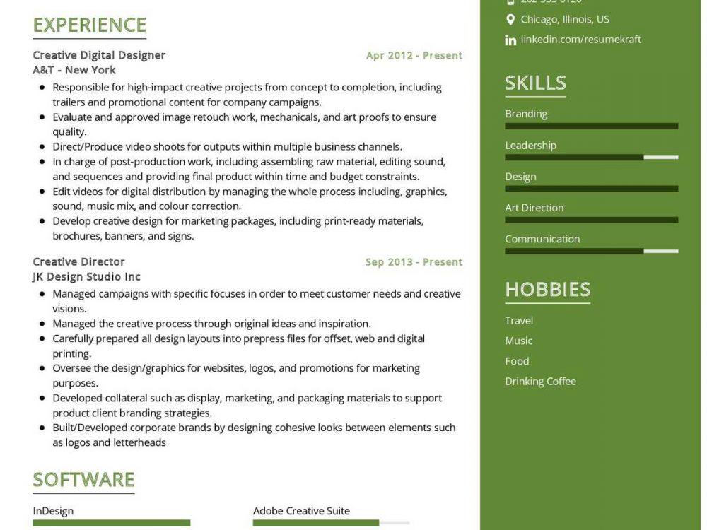 Digital Designer Resume Sample
