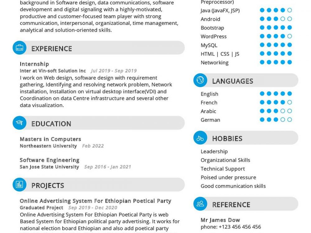Software Engineering Internship Resume