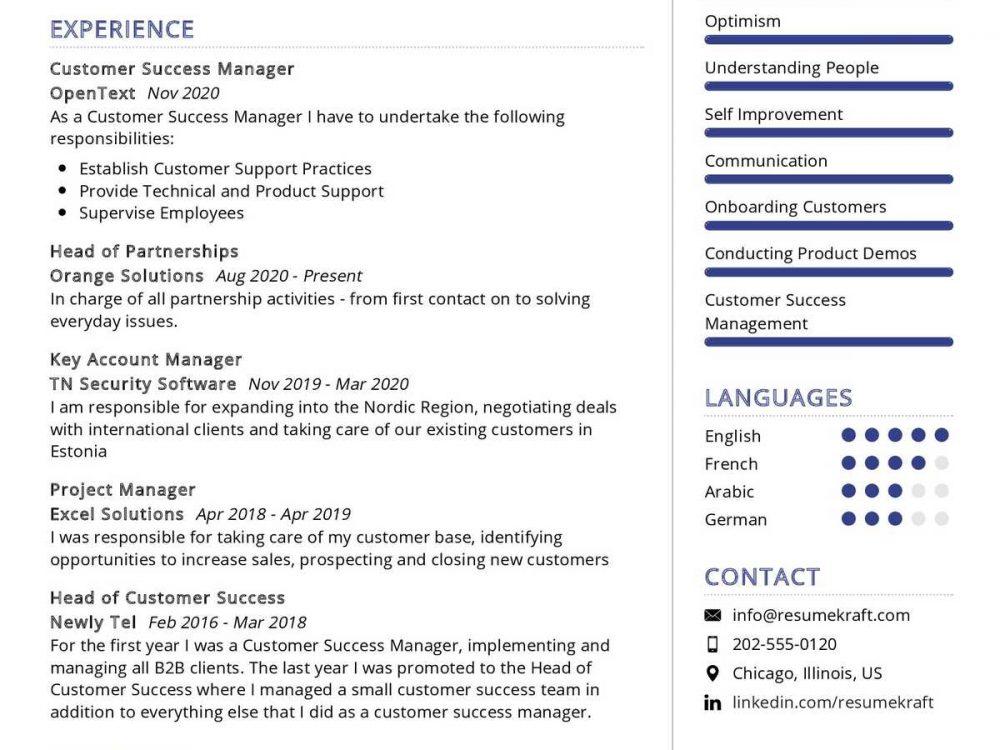 Customer Success Manager Resume Sample