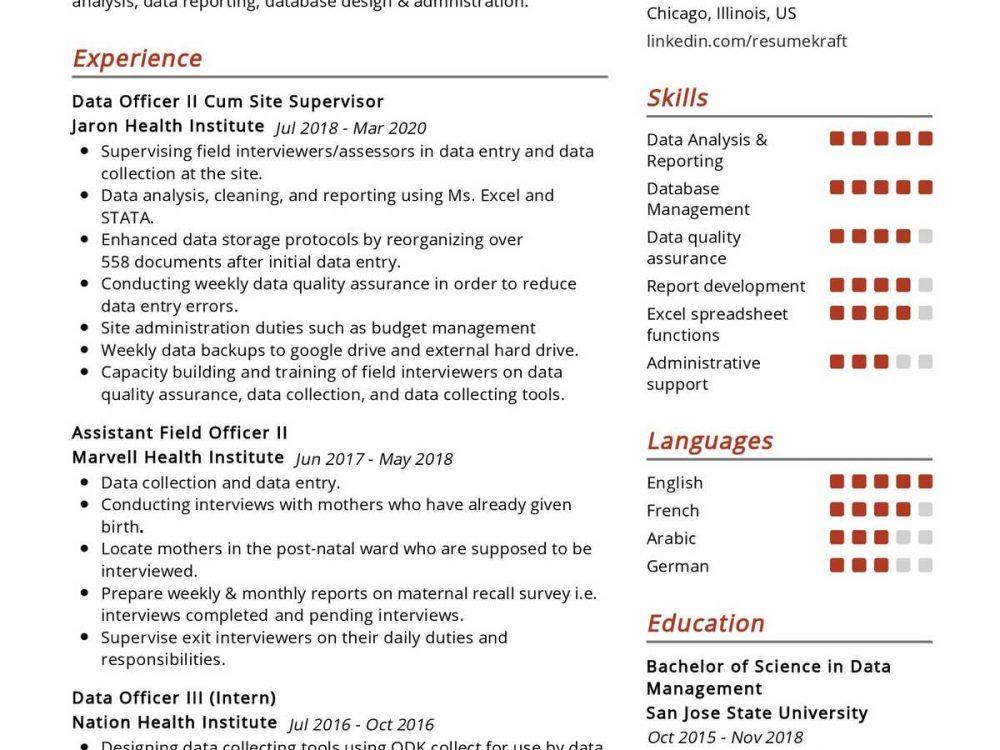 Data Officer Resume Sample