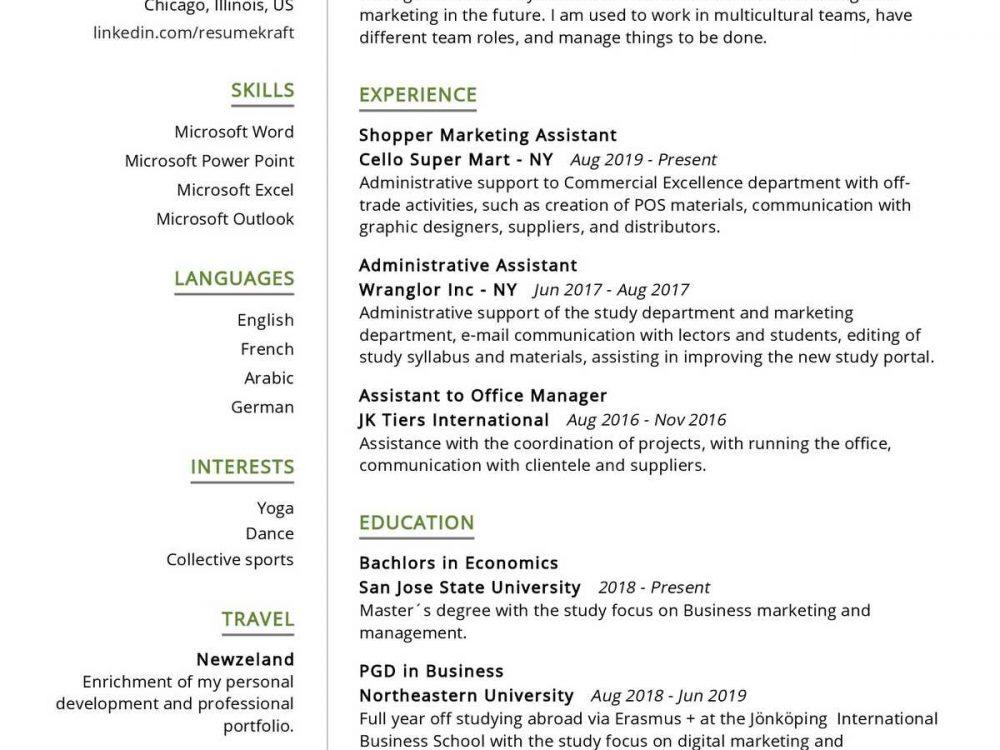 Shopper Marketing Assistant Resume