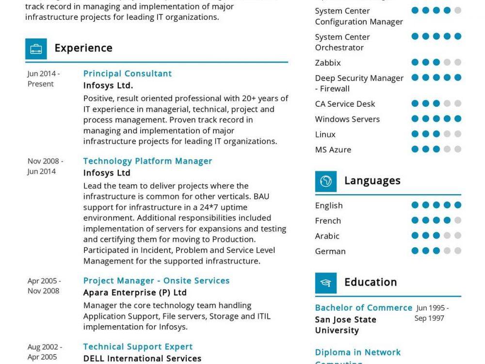 Software Consultant Resume