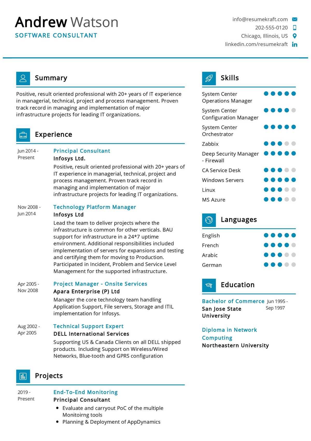 software consultant resume sample  resumekraft