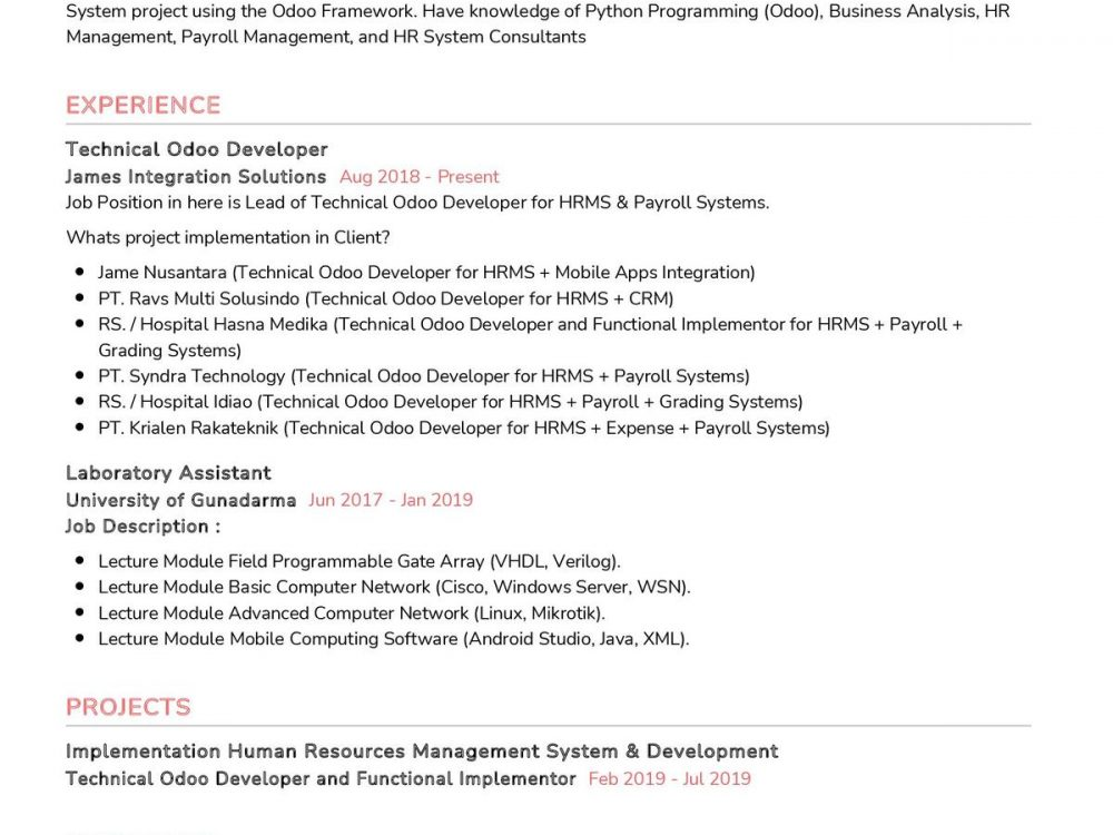 Technical Odoo Developer Resume