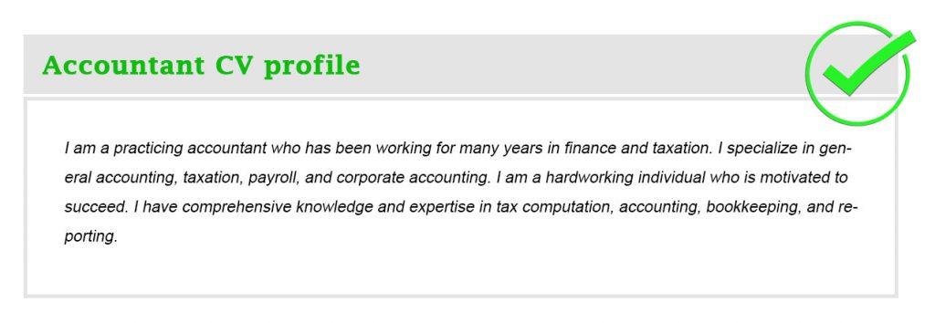 Accountant CV profile