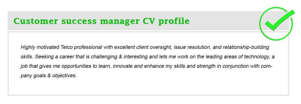 Customer success manager CV profile