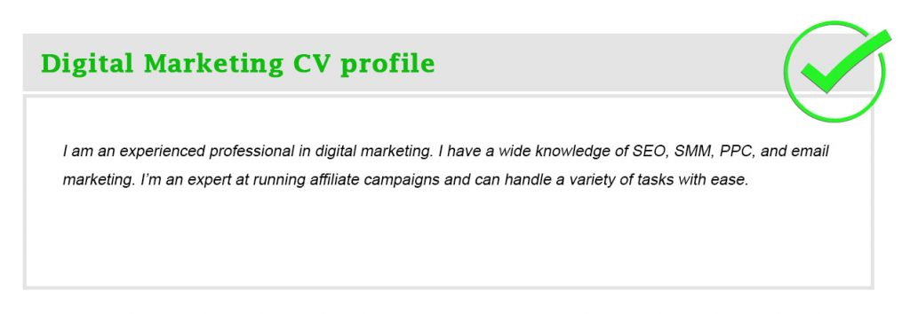 Digital Marketing CV profile