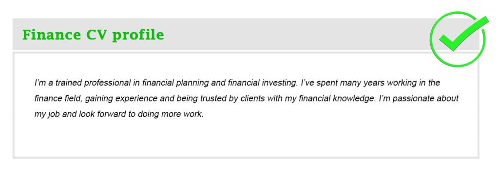 Finance CV profile