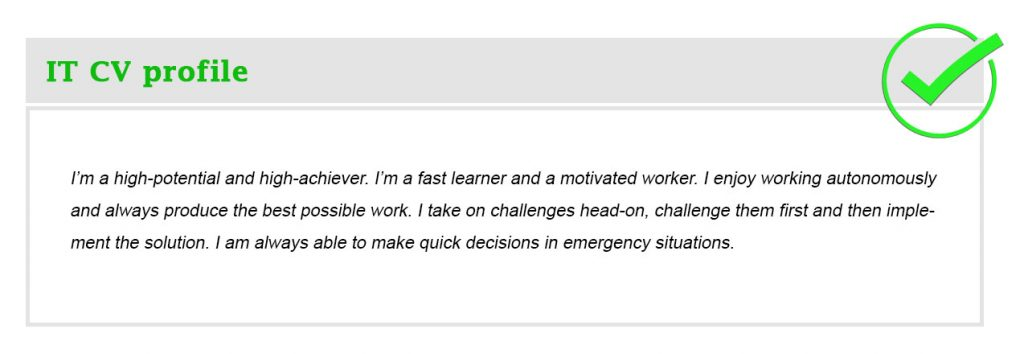 IT CV profile