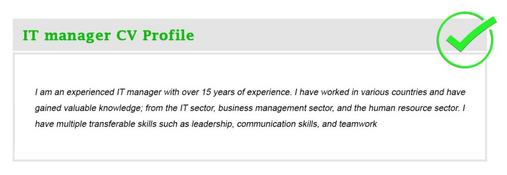 IT manager CV Profile