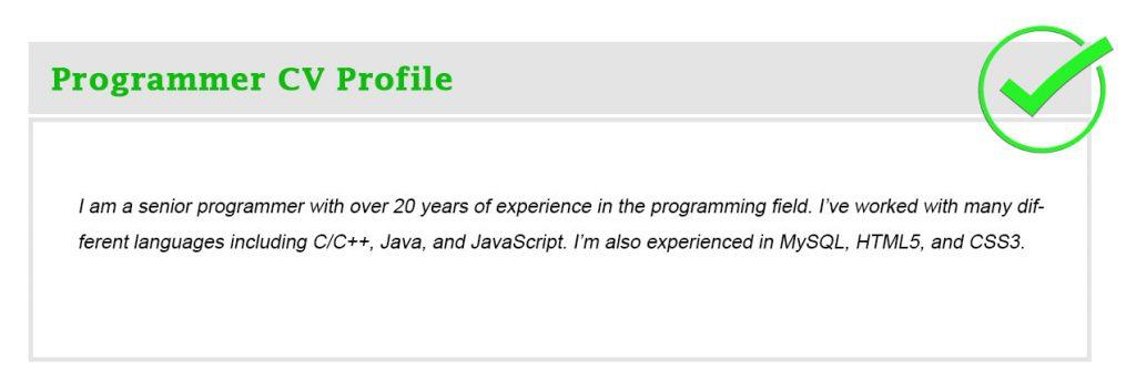 Programmer CV Profile