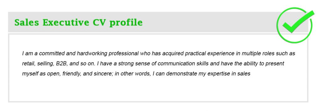 Sales Executive CV profile