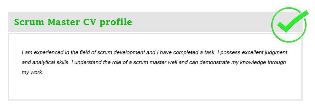 Scrum Master CV profile
