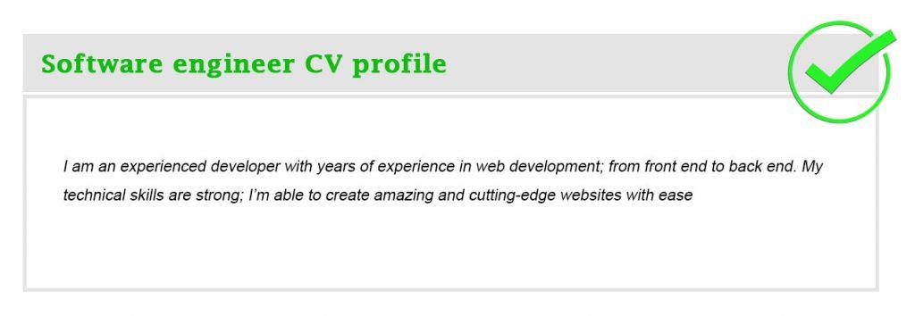 Software engineer CV profile