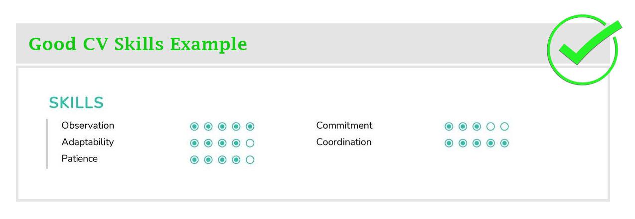 Good CV Skills Example