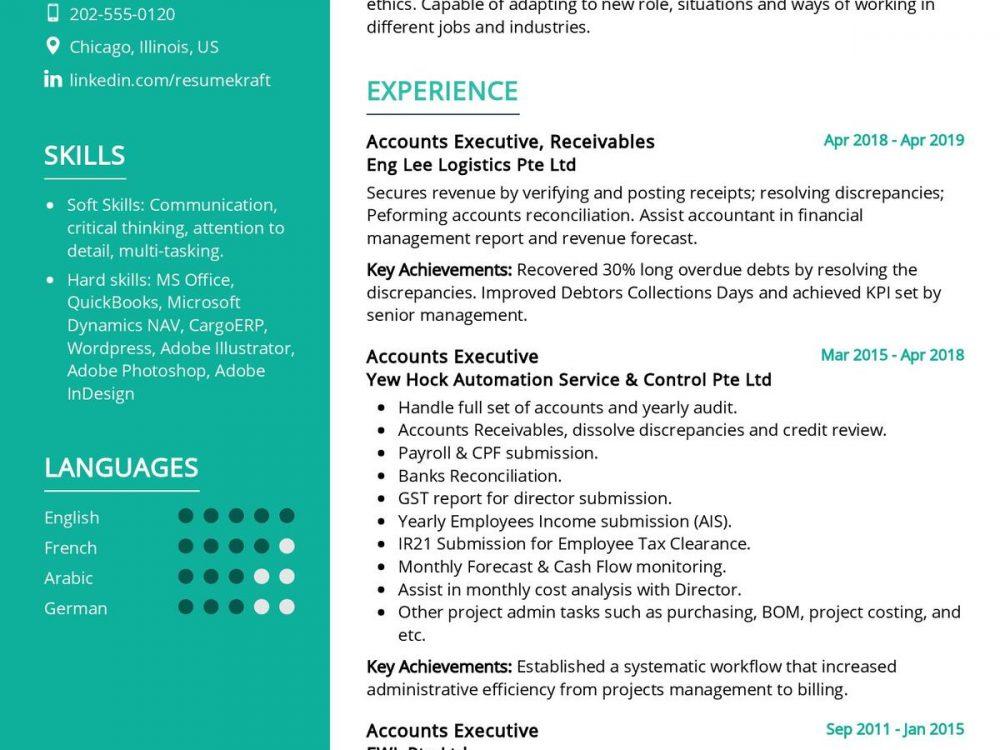 Accounts Executive CV Sample