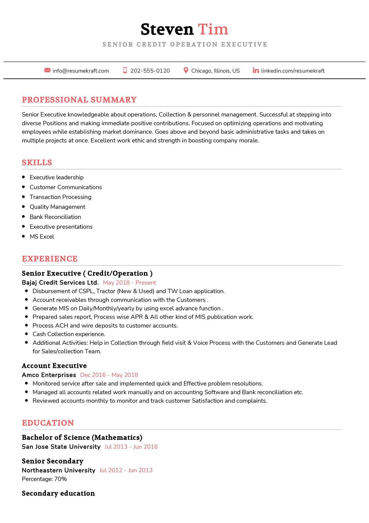 Credit Operation Executive CV Sample