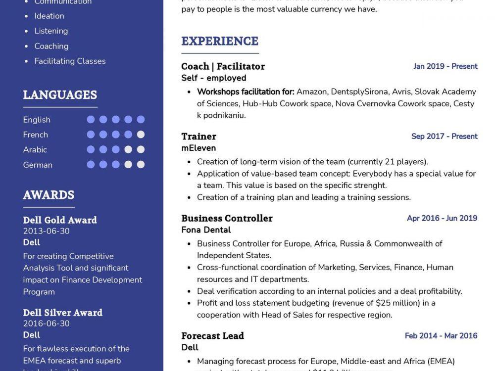 Facilitator CV Template