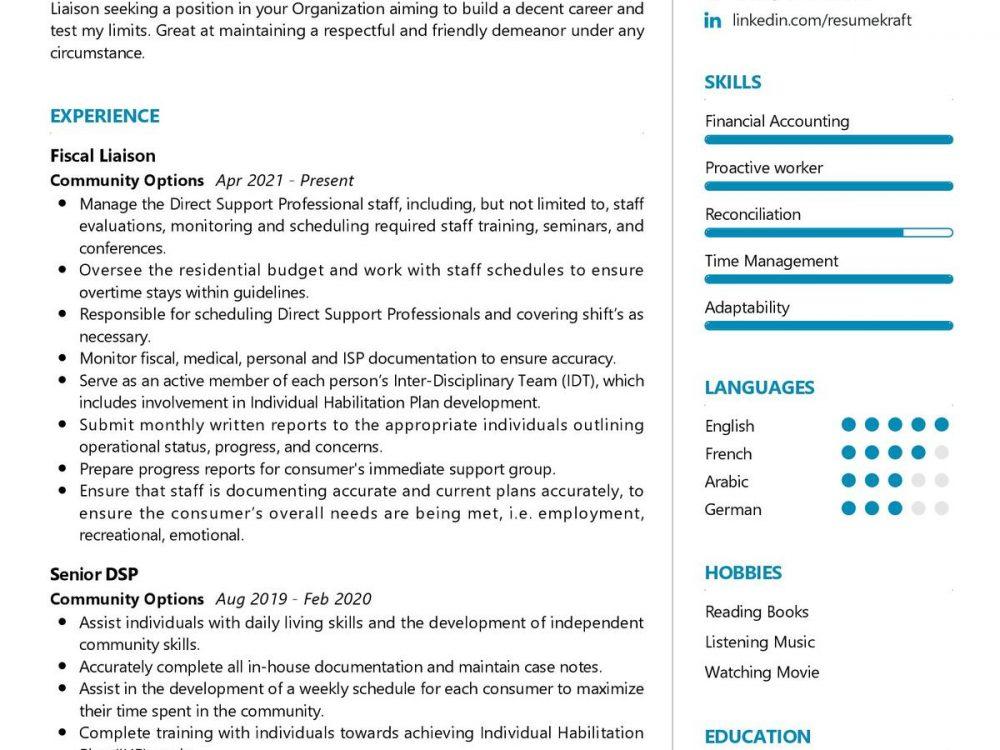 Financial Liaison CV Sample