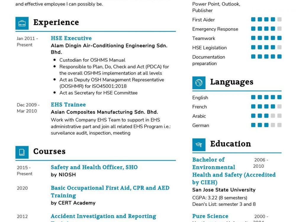 HSE Executive CV Template