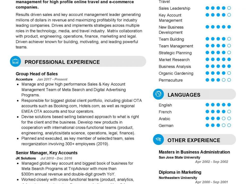 Head of Sales CV Template