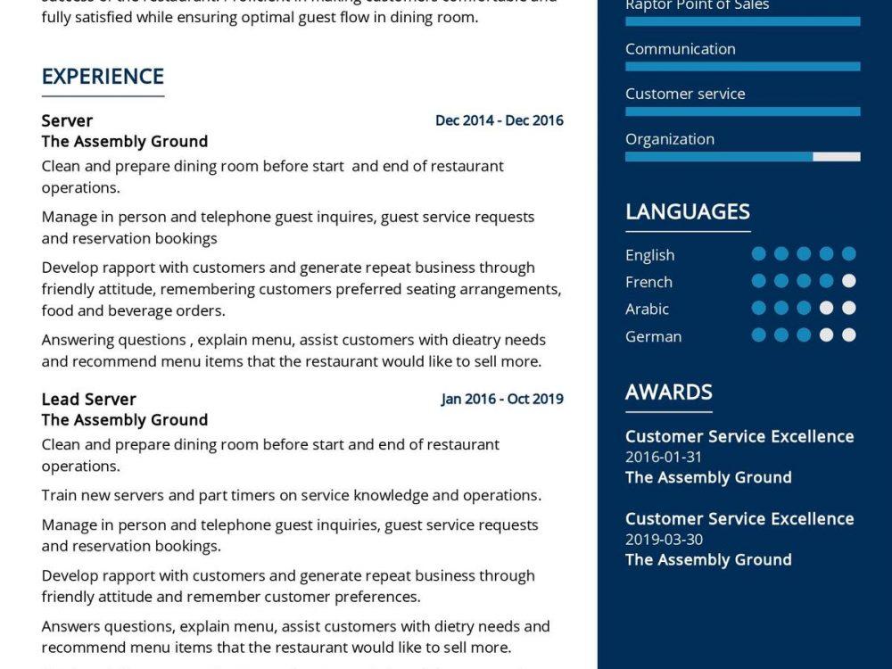 Lead Server CV Template