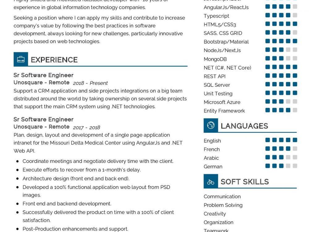 Senior Software Engineer CV Sample