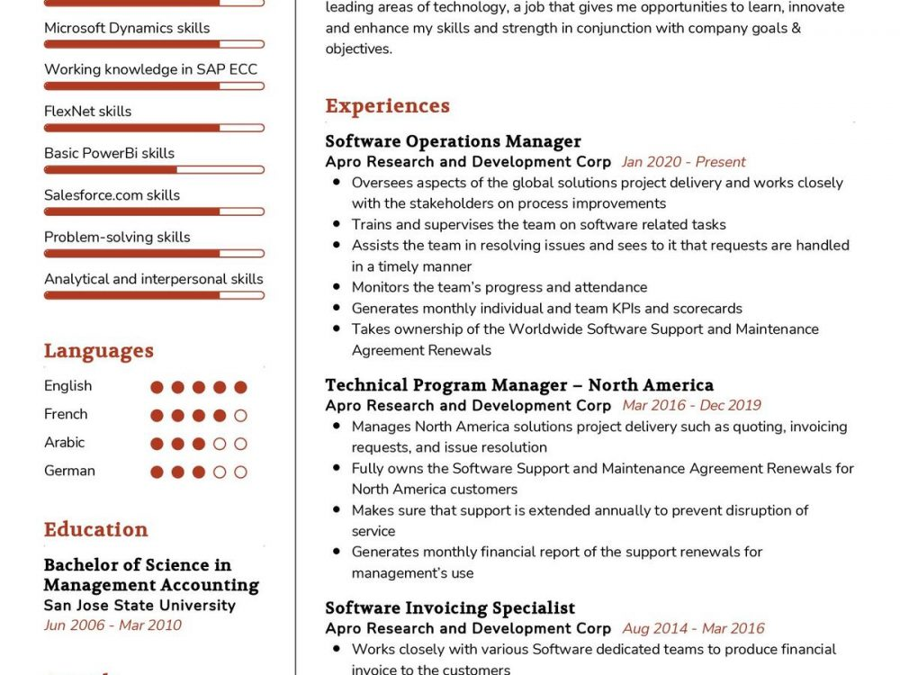 Software Operations Manager CV Sample