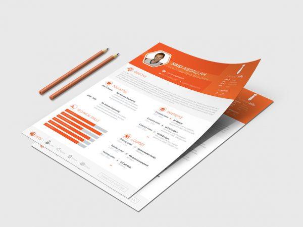 Minimal Resume Template Free