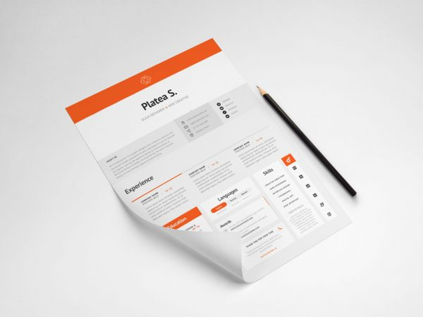 Free Resume Template in A4