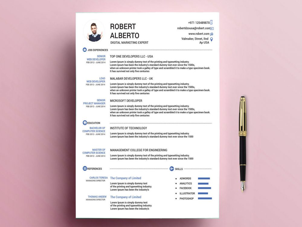 Classic Resume Template Free Download with Doc & PSD Formats ...