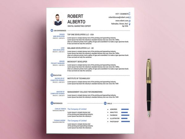 Classic Resume Template Free