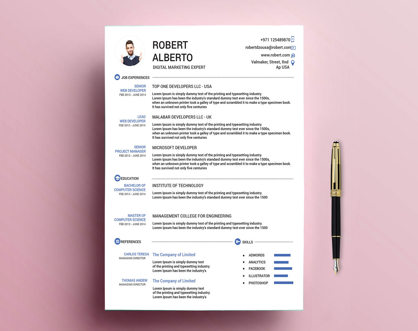 Classic Resume Template Free Download With Doc Psd Formats