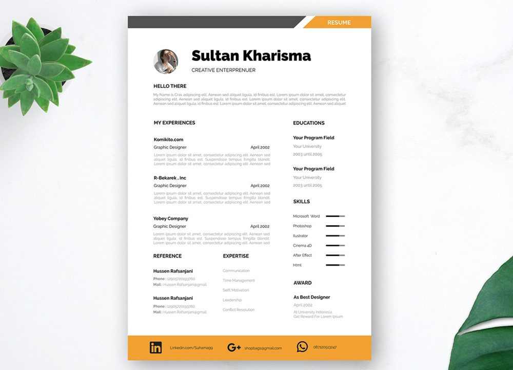 Professional Free Resume Template
