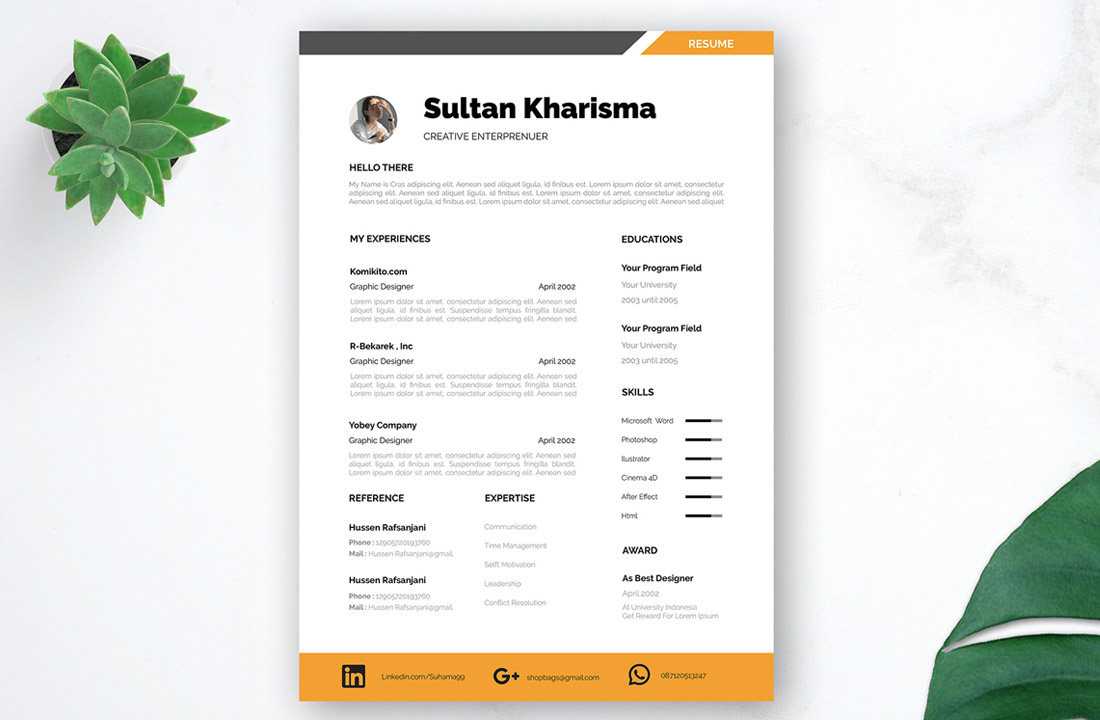 professional free resume template for dream job
