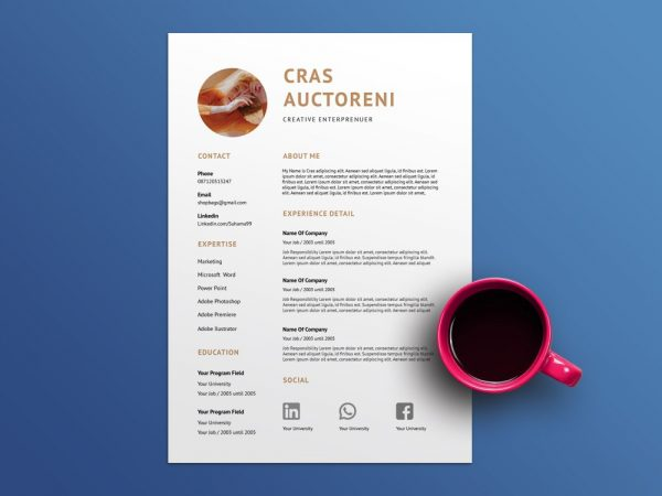 Resume Word Format Template