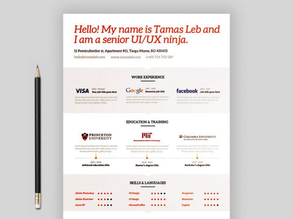 FREE Visual Resume Template
