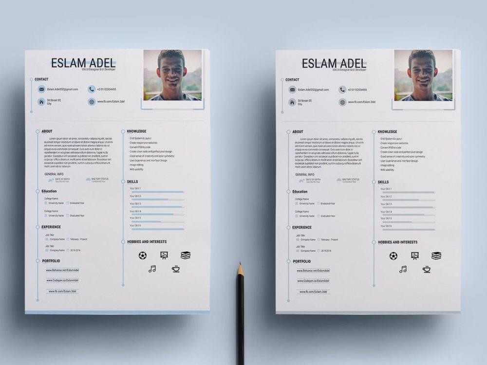 Free Clean CV Resume Template